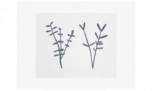 Sprigs, edition 50, 38 x 30cm, available